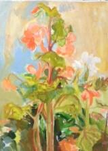 le-grand-begonia-huile-65x50
